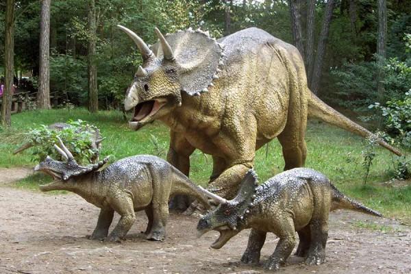 <center><b>Похищенного динозавра оставили на дороге</center></b>