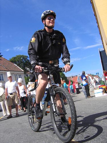 <center><b>Норвежский полицейский