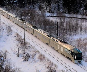Японцы заставили поезд гавкать