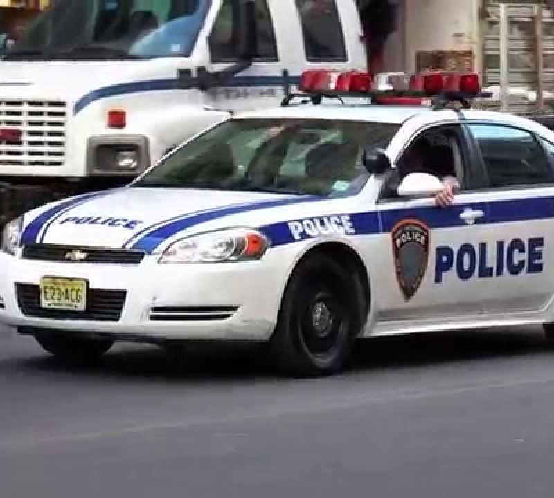 <center><b>Голубка в США устроила дом на полицейской машине</center></b>