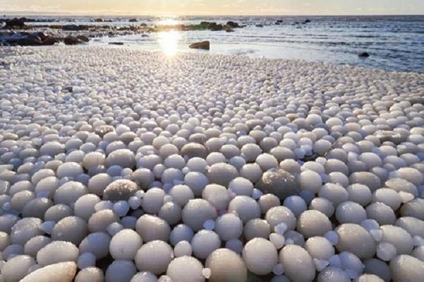 На берегу Балтийского моря появились «ледяные яйца»