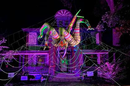 Житель США пугает соседей гигантским пауком