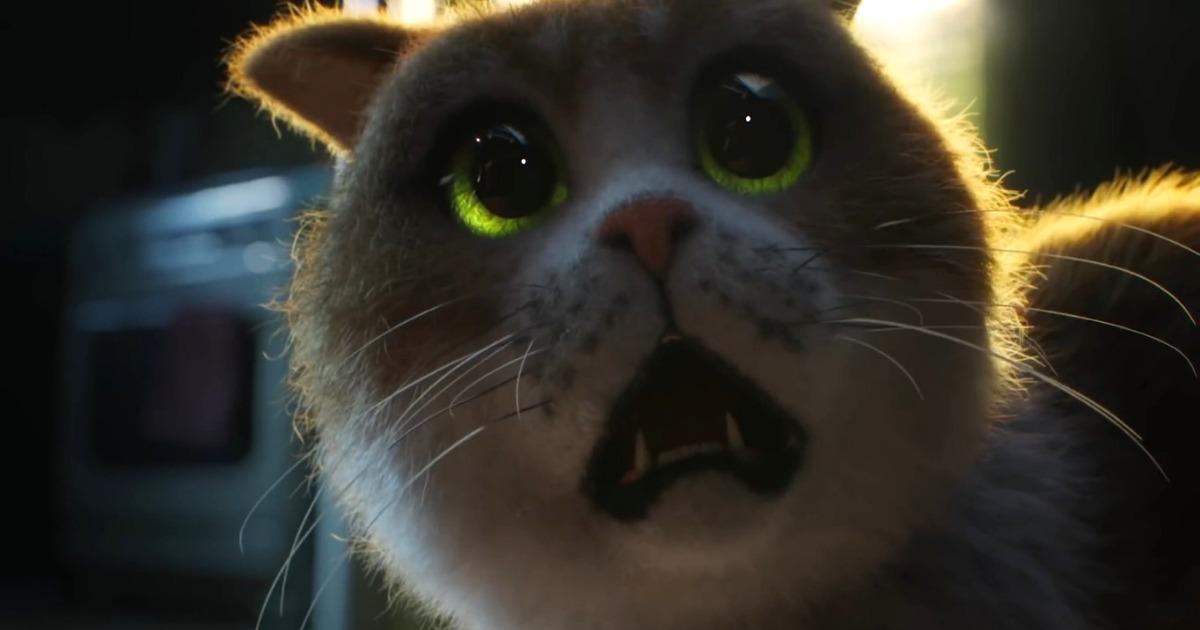 В сети появился новый ужастик – специально для котов