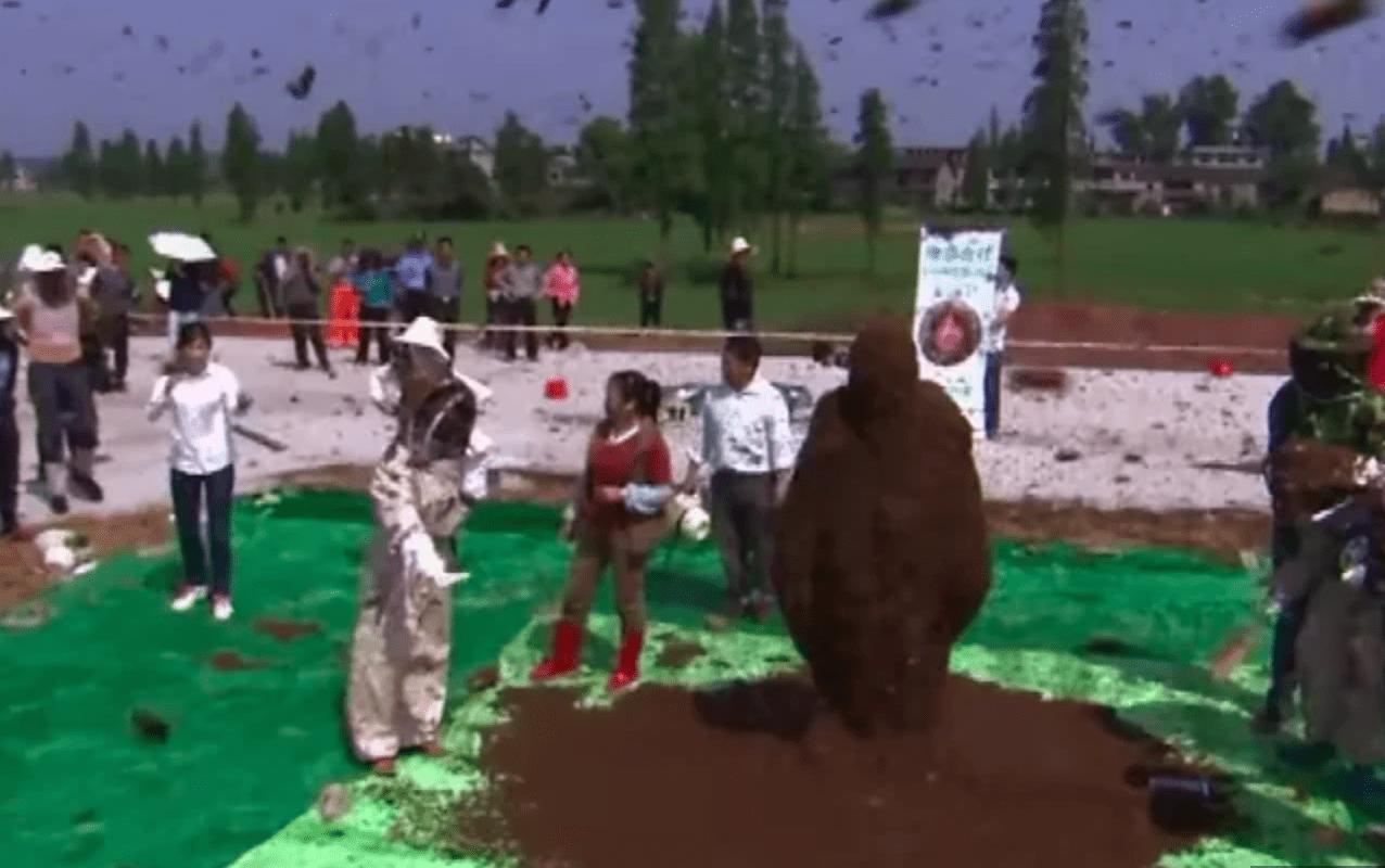 Китаец усадил на себя рой пчел и стал рекордсменом