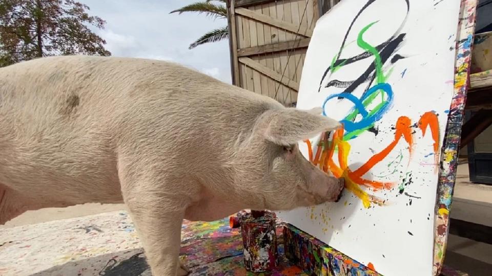 Африканская свинья изобразила принца Гарри