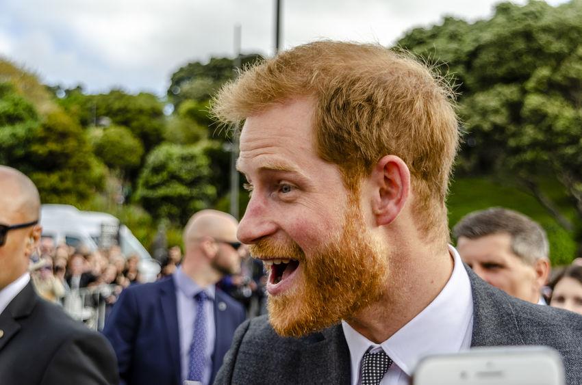 Принц Гарри уйдет в декрет